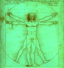 Leonardo uomo verde)