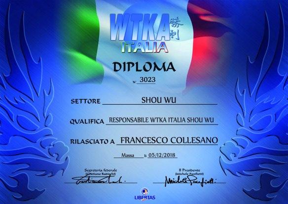 CertificatoWTKAITA-COLLESANO-SHOU WU-3023